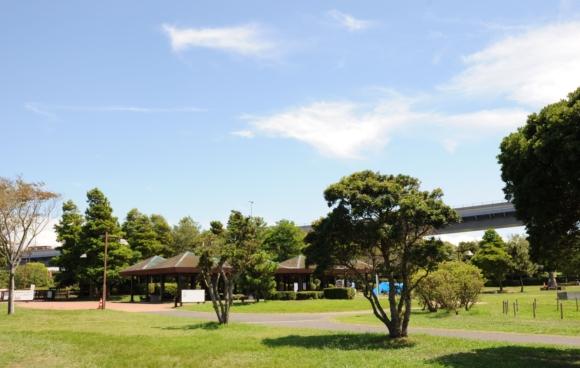 若洲海浜公園 レンタルバーベキュー