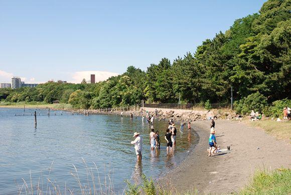 大井ふ頭海浜中央公園 バーベキューレンタル