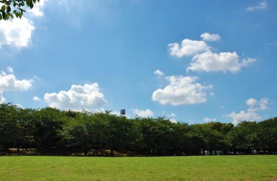 蕨市民公園バーベキュー レンタル