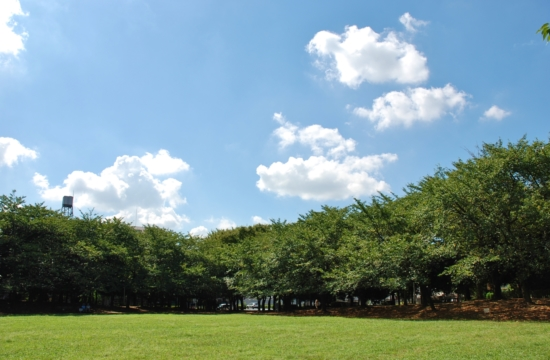 蕨市民公園 バーベキューレンタル