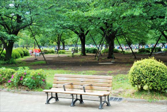 木場公園 バーベキュー