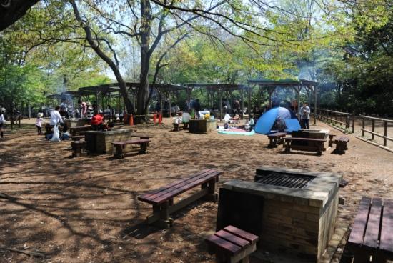 21世紀の森と広場 バーベキュー