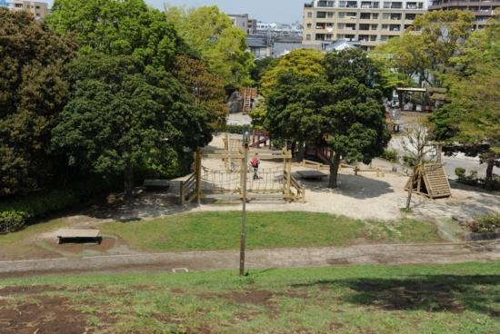 富士公園バーベキュー