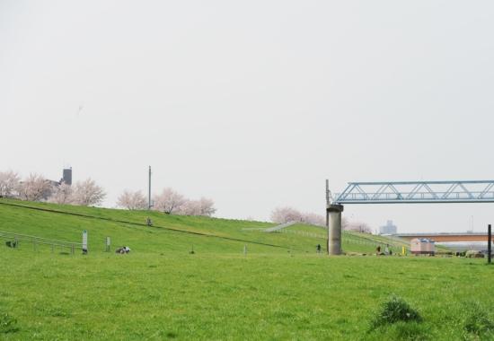赤羽岩淵関緑地公園 バーベキュー