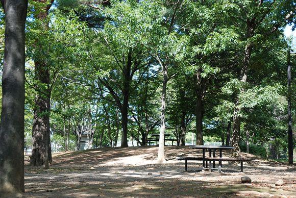 府中の森公園 バーベキュー 予約
