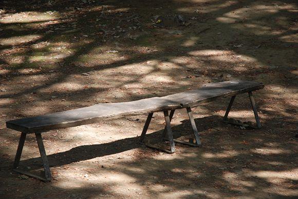 府中の森公園- バーベキュー 予約