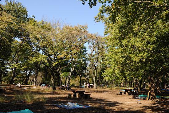 武蔵野公園 出張バーベキュー