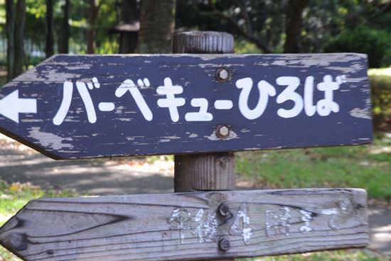 武蔵野公園 アクセス