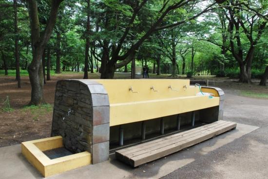 武蔵野公園 bbq
