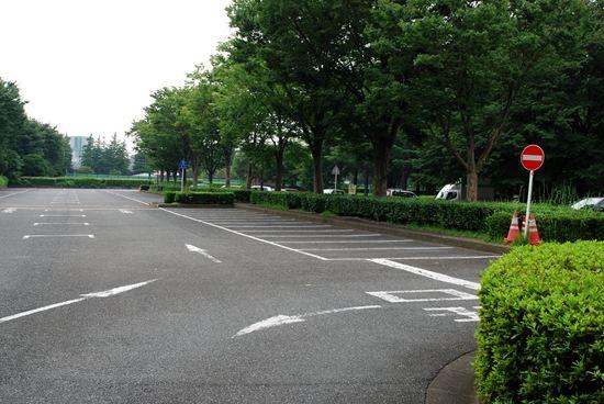 野川公園 バーベキュー 予約