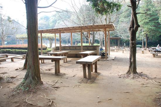 船橋県民の森 レンタル バーベキュー