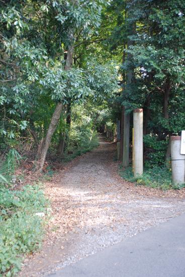 船橋県民の森 バーベキューレンタル