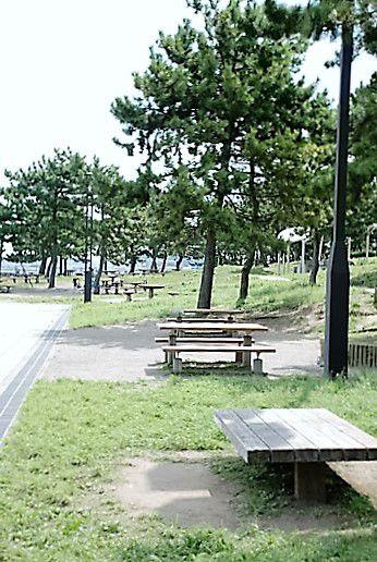海の公園 BBQレンタル
